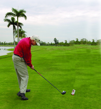 Jim Mclean golf